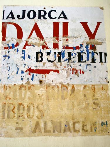 daily_bull.jpg