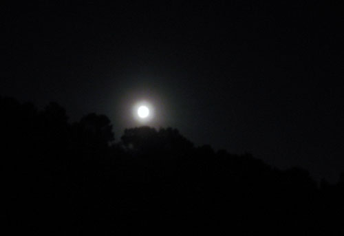 It was a Full Moon last night.