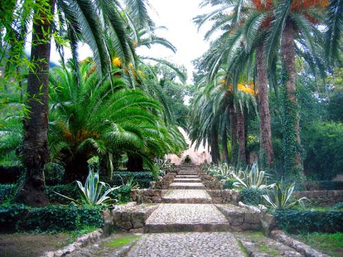 alfabia_gardens.jpg