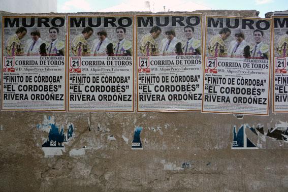 corrida_muro