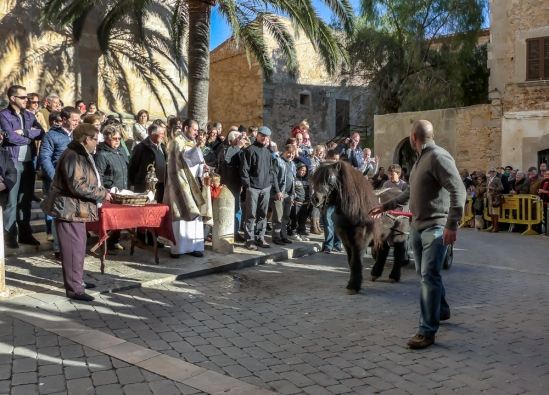 Sant Antoni animal blessings Santanyi