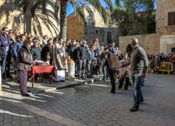 Sant Antoni animal blessings Santanyi